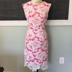 Chetta B Pink and White Lace Shift Dress 8